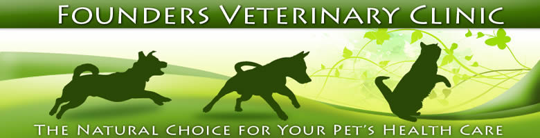Founders Veterinary Clinic - Los Angeles Holistic Veterinarian